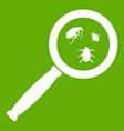 magnifier and insects icon green vector image vector image
