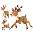 set of christmas deers vector image vector image
