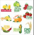 set organic fruit labels vector image