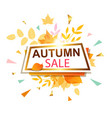banner for seasonal autumn sale vector image