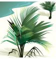 coconut tree vector image vector image