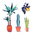 collection plants in different pots home decor vector image
