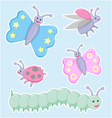 Happy little beetles butterflies and caterpillar vector image