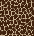 leather of giraffe 3 vector image