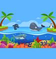 marine life in ocean vector image