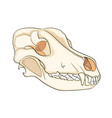 object on white background skull dog sideways vector image