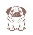 puppy pug serious dog outline cartoon vector image