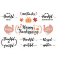 thanksgiving cards lettering and graphic design vector image