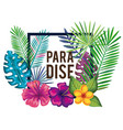 tropical and exotics flowers paradise vector image