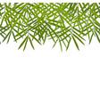 bamboo seamless horizon border vector image vector image