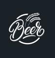 beer hand written lettering logo vector image