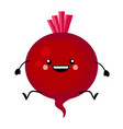 beetroot in flat styl vector image