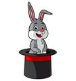 cartoon bunny in a magicians hat vector image vector image