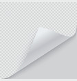 curled corner paper with shadow vector image vector image