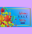 fashionable autumn sale vector image