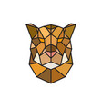 jaguar head logo template for business vector image vector image