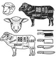 lamb cuts butcher diagram design element vector image