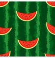 Watermelon background Seamless endless vector image