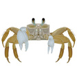 Beach Crab vector image vector image