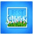Best summer poster vector image