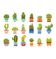 cactus in pot set vector image vector image