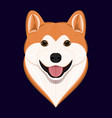 cartoon akita dog vector image vector image