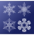Decorative Snowflakes set Background pattern for vector image vector image