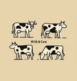 four cow linear style icon vector image