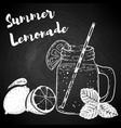 hand drawn bottle with lemonade lemons and mint vector image