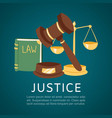 justice and court law book and hummer cartoon vector image
