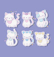 set cute cats animals with whiskers vector image vector image