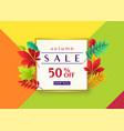 fashionable autumn sale vector image