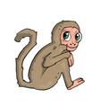 monkey on white background cute cartoon vector image
