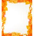 Orange petals frame vector image vector image