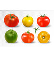 realistic 6 different colors tomatoes vector image
