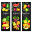 tropical and garden fruit chalkboard banner set vector image vector image