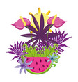 tropical watermelon cartoon vector image