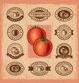 Vintage tomato stamps set vector image