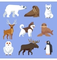 North Arctic or Antarctic animals and birds vector image
