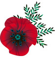 bright red poppy flower vector image vector image