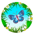 Butterfly in a clearing 2 vector image