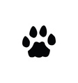cat footprint vector image vector image