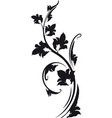 decorative floral branch vector image vector image