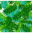green succulent fir branches seamless pattern on vector image vector image