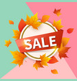 round banner for seasonal fall sale vector image vector image