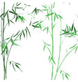 bamboo oirental asian green seamless pattern vector image