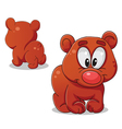 Bear front and back vector image vector image