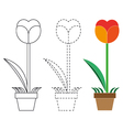 Flower coloring book and dotted line vector image vector image