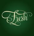 Fresh handmade calligraphy vector image vector image