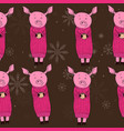 pig with gifts cocoa vector image vector image